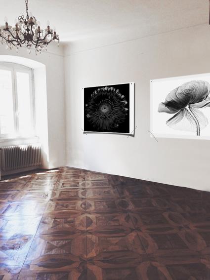 Max Gardone, Dark Flowers