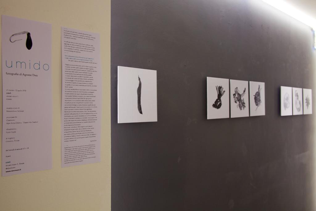 Umido di Agnese Divo, Cavò, 21 marzo - 20 aprile 2018